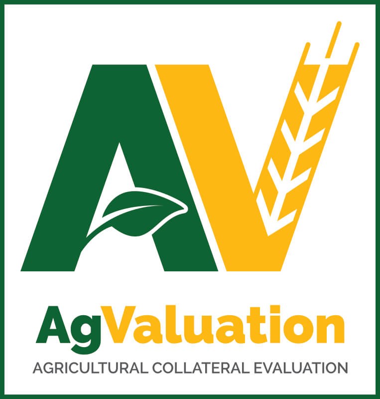 agvaluation logo